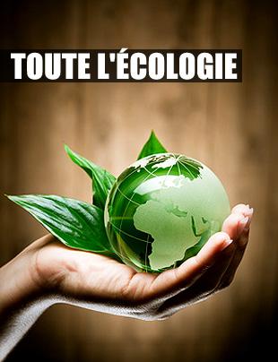Toute l'écologie