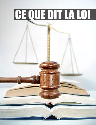Ce que dit la loi