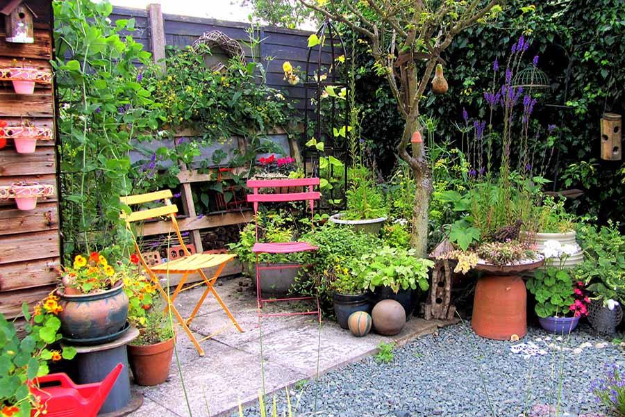 futur jardin