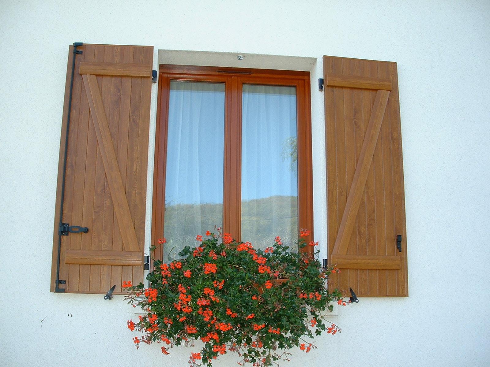 Fenêtres de façade
